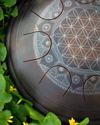 Freezbee Flower of life